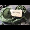 Kép 7/7 - Mannavita SPIRULINA tabletta 500mg étrend-kiegészítő, 180db